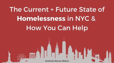 Rescue Alliance-Homelessness in NYC